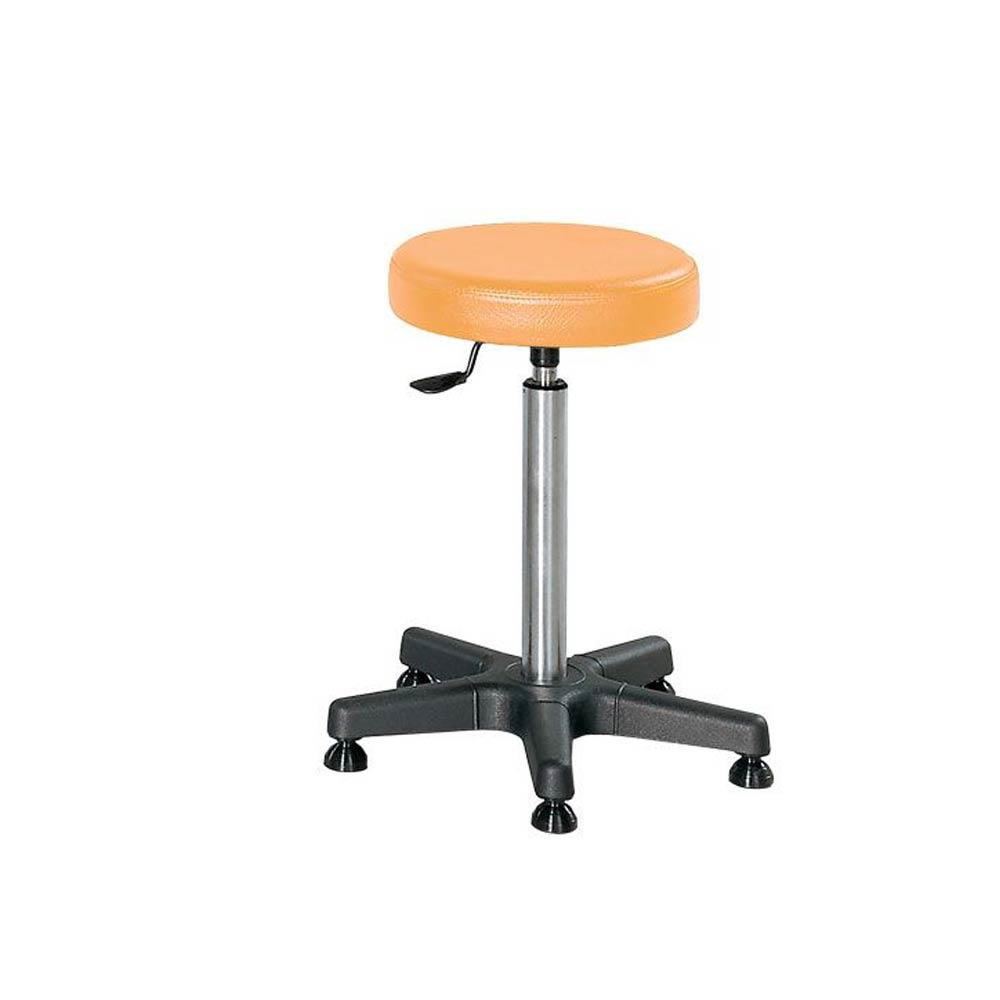 Select Practitioner Stools Select Practitioner Stool with Footring