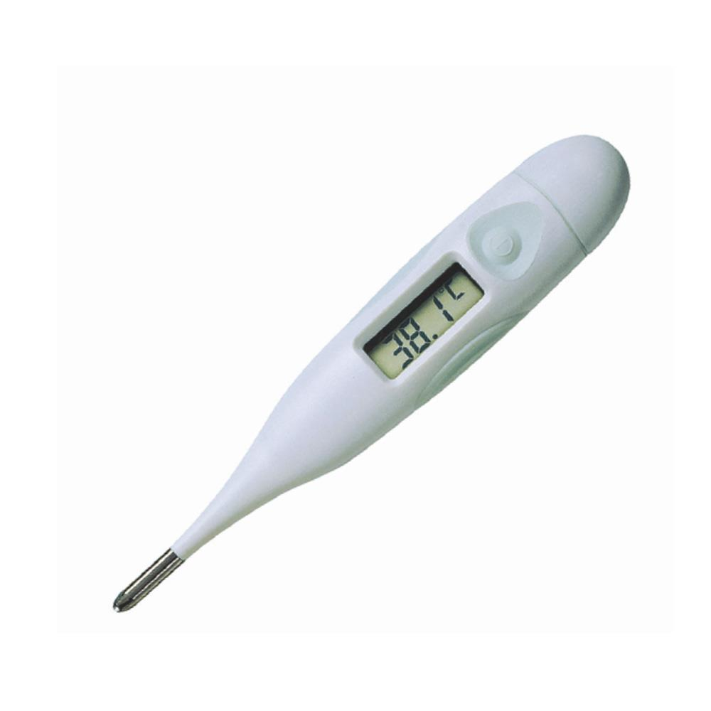 MSR 10 Second Thermometer